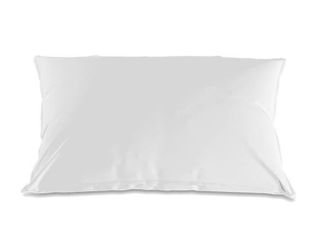 Master pillow Classic Arve